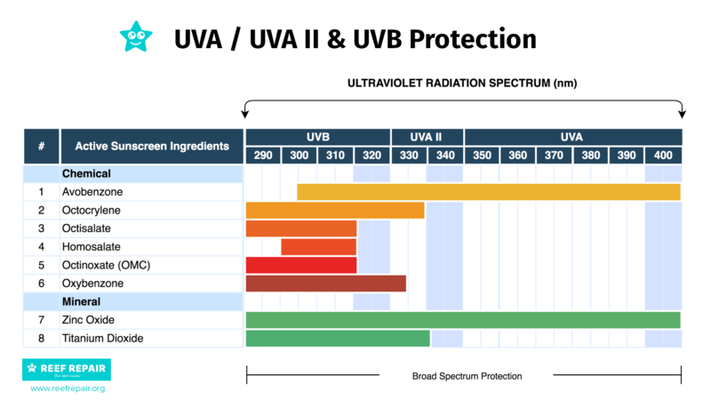 Active sunscreen ingredients UVA, UVA II & UVB Protection Graph