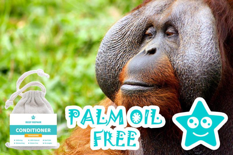 Palm Oil Free Conditioner Bar Tangerine Flavor Reef Safe Hair Care Reef Repair