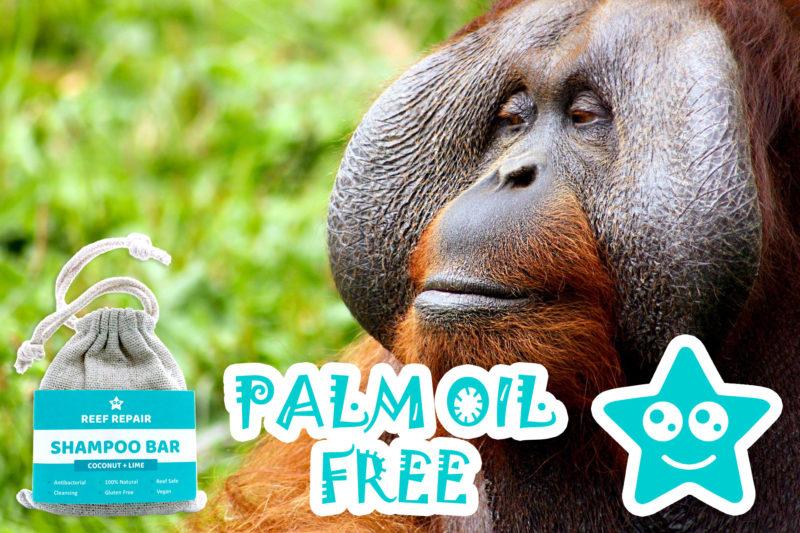 Palm Oil Free Shampoo Bar Coconut Lime Flavor Reef Safe Hair Care Reef Repair
