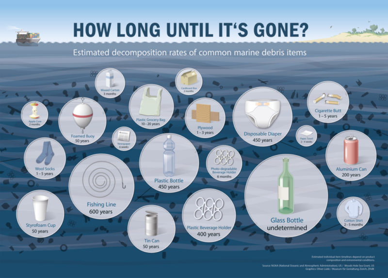 Biodegradability timeline for common plastic items