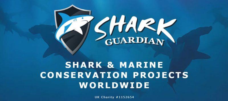 Shark Guardian Thailand