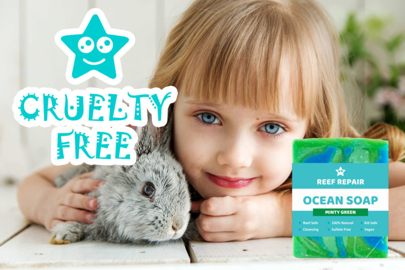Cruelty Free Ocean Safe Soap Minty Ocean Scent Reef Safe Soap Reef Repair Skin Care